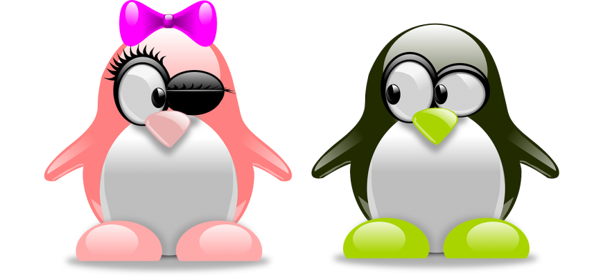 penguins-157418_1280